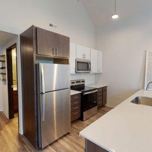Luxury Kitchen and Appliances